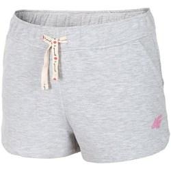 Kleidung Damen 3/4 Hosen & 7/8 Hosen 4F JSKDD001 Grau