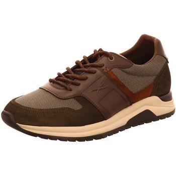 Schuhe Herren Derby-Schuhe & Richelieu Brax Schnuerschuhe Schnürschuh 32162 Other