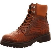 Schuhe Damen Stiefel Brax Stiefeletten Boots 60201 braun