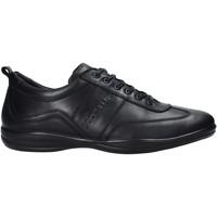 Schuhe Herren Sneaker Docksteps DSM105001 Schwarz