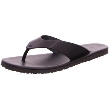 Schuhe Herren Sandalen / Sandaletten Nuovo Nicar Offene M 8884 schwarz