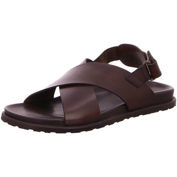 Schuhe Herren Sandalen / Sandaletten Nuovo Nicar Offene M6916 braun