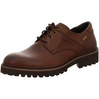 Schuhe Herren Derby-Schuhe & Richelieu Pius Gabor Schnuerschuhe 050650-03 braun