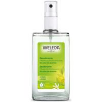 Beauty Damen Deodorant Weleda Citrus Deodorant 24h Eficacia Spray  100 ml