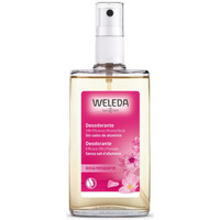 Beauty Damen Deodorant Weleda Rosa Mosqueta Deodorant 24h Eficacia Spray