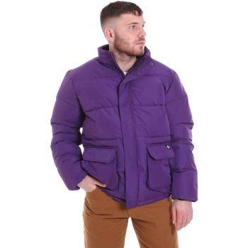 Kleidung Herren Daunenjacken Dickies DK720342DEP1 Violett