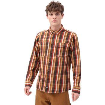 Kleidung Herren Langärmelige Hemden Dickies DK0A4X5LBD01 Braun