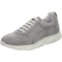 Schuhe Damen Sneaker Apple Of Eden Schnuerschuhe Diva 12 Diva 12 light grey Diva 12 grau