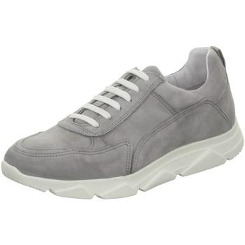 Schuhe Damen Sneaker Apple Of Eden Diva 12 Diva 12 light grey Diva 12 grau