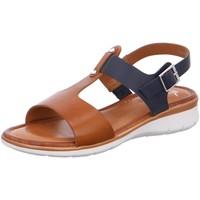 Schuhe Damen Sandalen / Sandaletten Ara Sandaletten 12-23610-05 braun