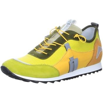 Schuhe Damen Sneaker Low Donna Carolina Schnuerschuhe 43.763.159-ROSSO gelb