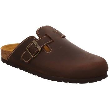 Schuhe Herren Pantoletten / Clogs Bio Life 0005.ESC20/1CM.ESPONJA09.299/90.964/20. braun