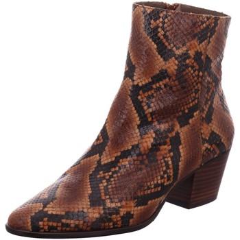 Schuhe Damen Low Boots Pedro Miralles Stiefeletten 25308-rovere animal