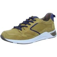 Schuhe Herren Sneaker Low Sioux Schnuerschuhe Denjalo-703 38901 gelb