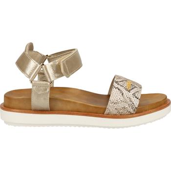 Schuhe Damen Sandalen / Sandaletten Scapa Sandalen Platinum