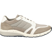 Schuhe Herren Sneaker Salamander Sneaker Weiß/Grau
