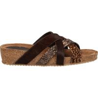 Schuhe Damen Pantoletten / Clogs Lazamani Pantoletten Brown