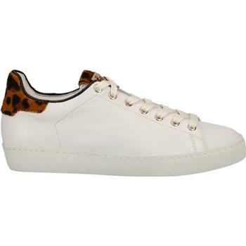 Schuhe Damen Sneaker Low Högl Sneaker Weiß/Gelb