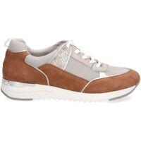 Schuhe Damen Sneaker Low Caprice Sneaker Braun/Grau