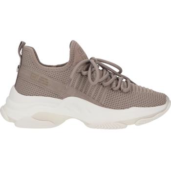 Schuhe Damen Sneaker Low Steve Madden Sneaker Taupe