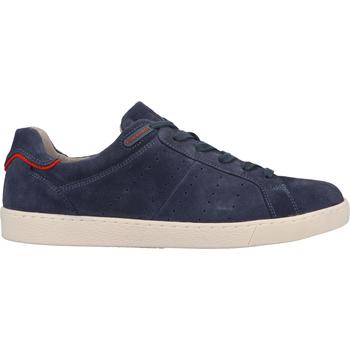 Schuhe Herren Sneaker Pius Gabor Sneaker Blau/Rot