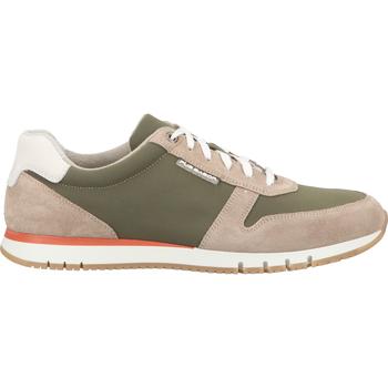 Schuhe Herren Sneaker Pius Gabor Sneaker Grün/Kombi