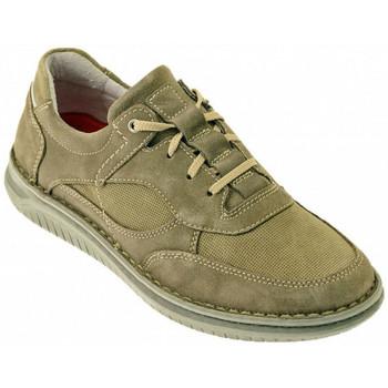 Schuhe Herren Sneaker High Zen DODO sneakers Multicolor