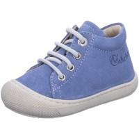 Schuhe Mädchen Sneaker High Naturino Maedchen 2012889-18 1C60 blau