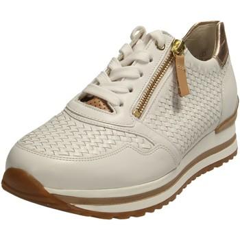 gabor -   Sneaker Schnuerschuhe 66.529.51 weiss 66.529.51