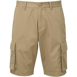 Kleidung Herren Shorts / Bermudas Asquith & Fox AQ054 Khaki