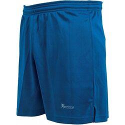 Kleidung Shorts / Bermudas Precision  Königsblau