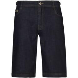 Kleidung Herren Shorts / Bermudas Diverse Sport Sakio 3502300 00885 blau
