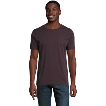 Kleidung Herren T-Shirts Sols LUCAS MEN Burdeos