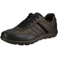 Schuhe Herren Sneaker Low Ara Schnuerschuhe FINN 11-24301-07 braun