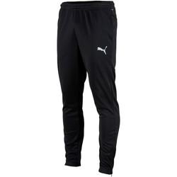 Kleidung Herren Jogginghosen Puma Pantalon  Teamrise poly training noir
