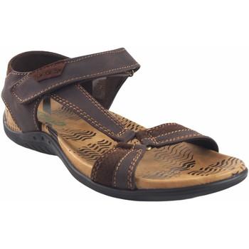 Schuhe Herren Sandalen / Sandaletten Bitesta Sandale  21s 1303b braun Braun
