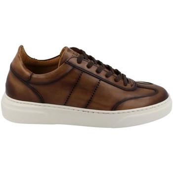 Schuhe Herren Sneaker Low Calce  Marrón