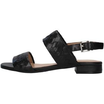 Schuhe Damen Sandalen / Sandaletten Apepazza S1PETIT18/VEG SCHWARZ