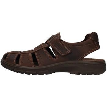 Schuhe Herren Sandalen / Sandaletten Enval 7219111 BRAUN