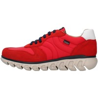 Schuhe Herren Sneaker Low CallagHan 12903 ROT