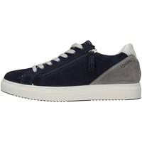Schuhe Herren Sneaker Low IgI&CO 5138900 BLAU