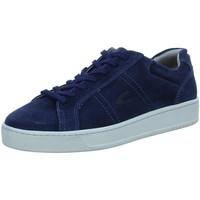 Schuhe Herren Sneaker Low Camel Active 22233801-C67 blau