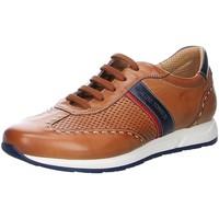 Schuhe Herren Sneaker Low Galizio Torresi Schnuerschuhe 419610 V19027 419610 V19027 braun