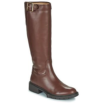 Schuhe Damen Klassische Stiefel Coach LEIGH Cognac