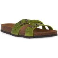 Schuhe Damen Pantoffel Bioline 233 ALOHE INGRASSATO Verde