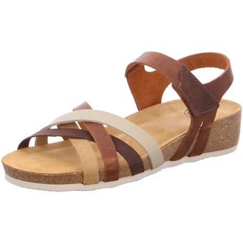 Schuhe Damen Sandalen / Sandaletten Brako Sandaletten  Sandalette CRETA 202 Combi Apure Amarillo braun