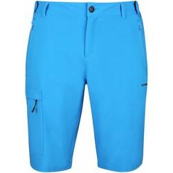 Kleidung Herren Shorts / Bermudas Icepeak Sport  VEAZIE, He. Short BLAU 47598865E 360 blau