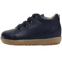 Schuhe Kinder Sneaker Falcotto 2014581 01 Blau
