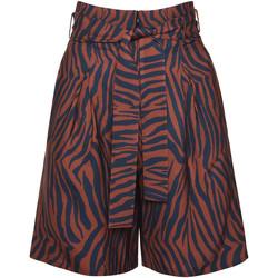 Kleidung Damen Shorts / Bermudas Lisca Lima  Sommer Short Violett/oranget