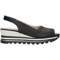 Schuhe Damen Sandalen / Sandaletten Comart 9C3486 Schwarz